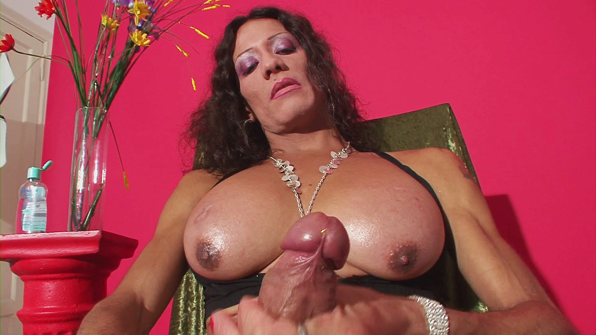 males transexuals she Latin