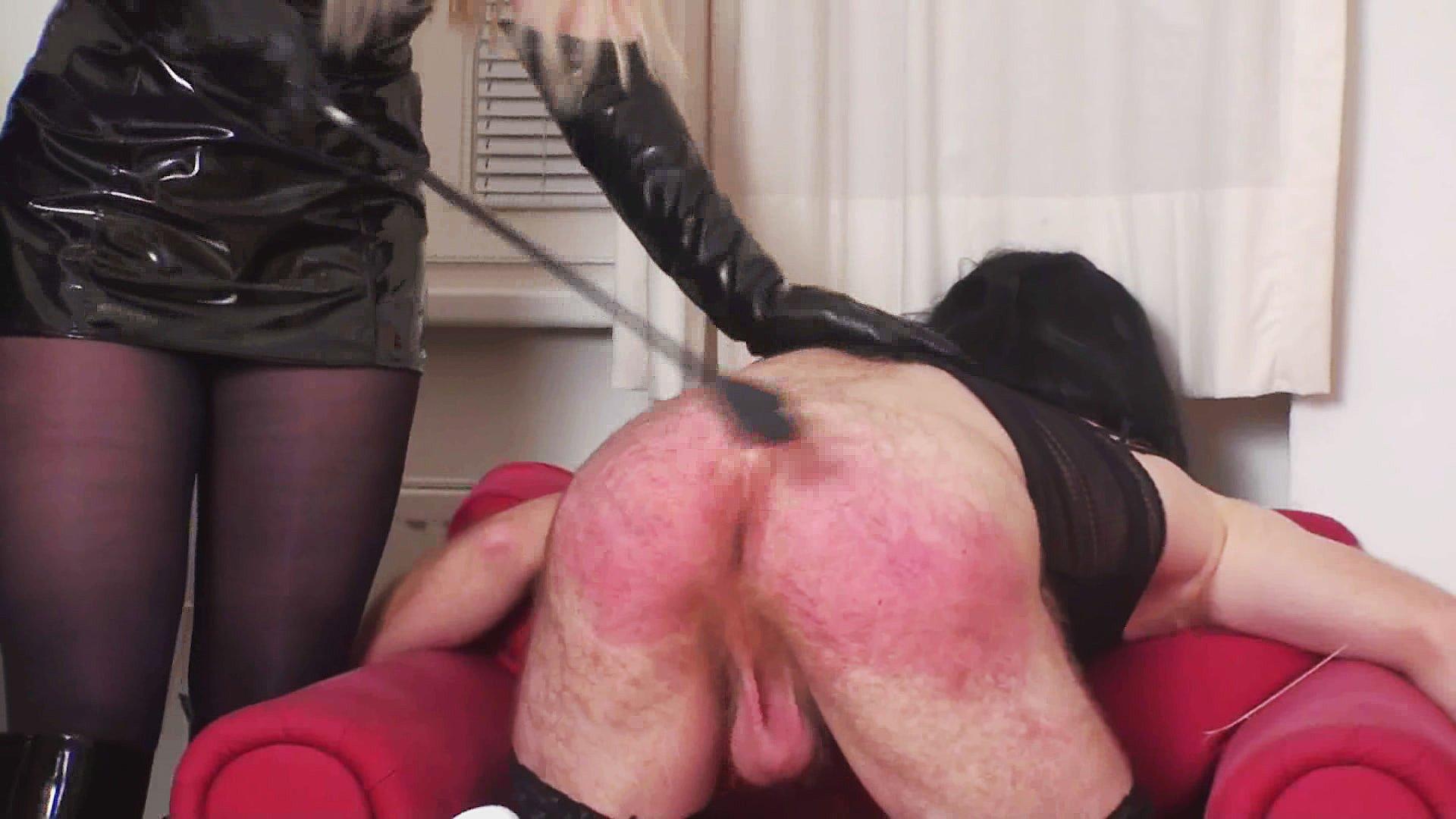 Top Porn Images Bisex free pics